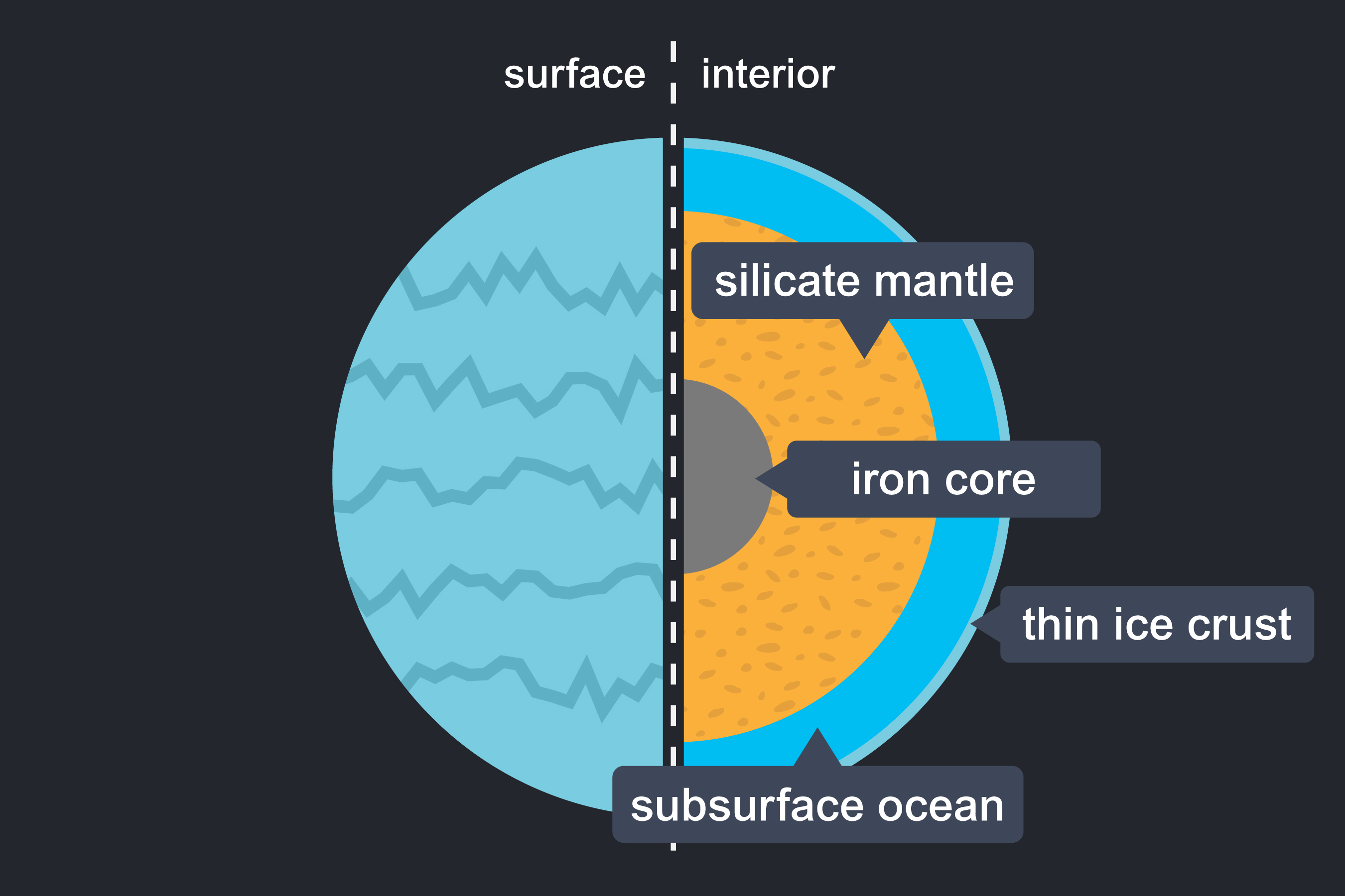 A fully labelled cross section of the interior of Europa. The left side shows an illustrated surface of Europa. The right side shows an illustrated interior of Europa. The labels show (from centre to surface): iron core, silicate mantle, subsurface ocean, thin ice crust.